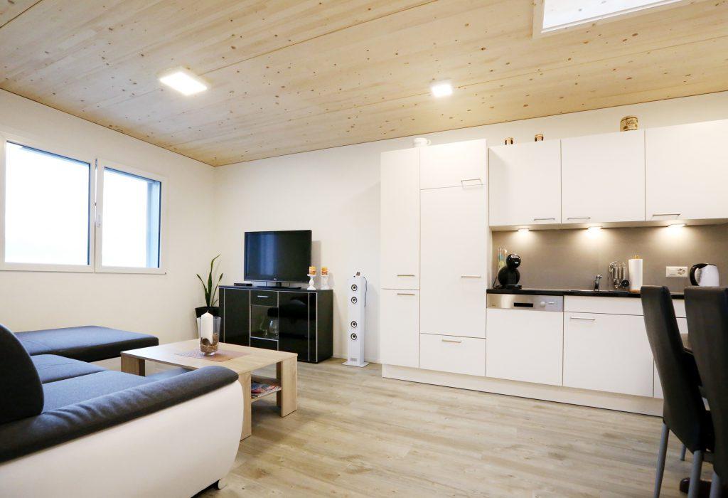 Holzbau Kueche Wohnzimmer