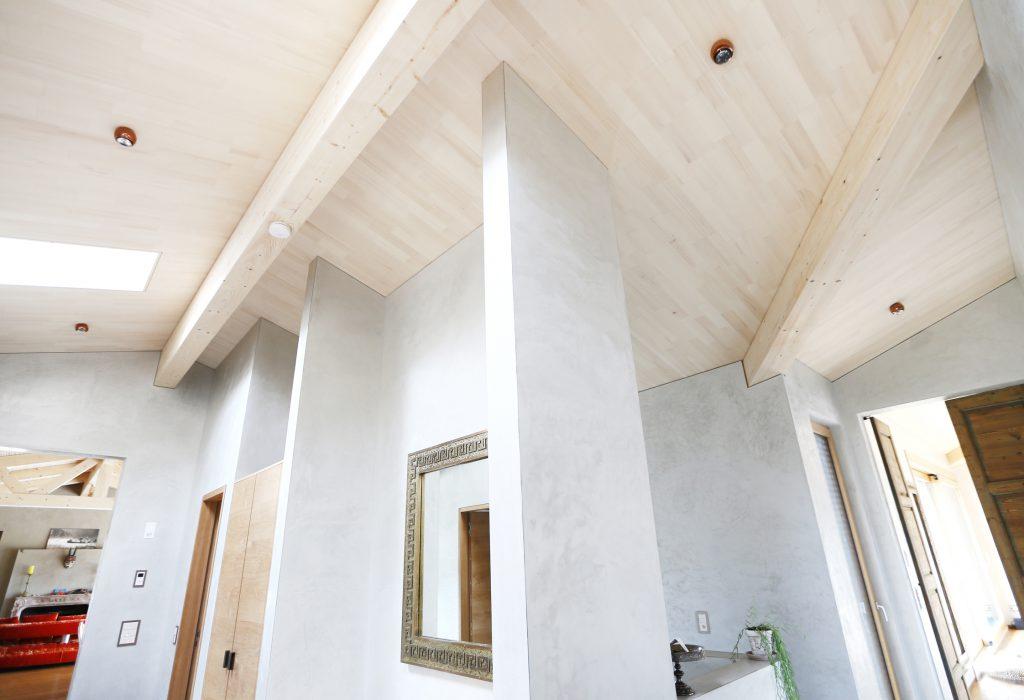 Neubau Efh Holzbau